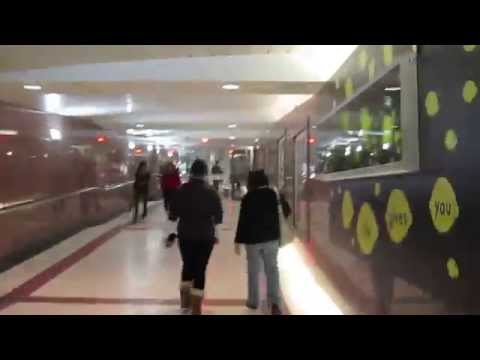 Toronto - Video 7 - The Path