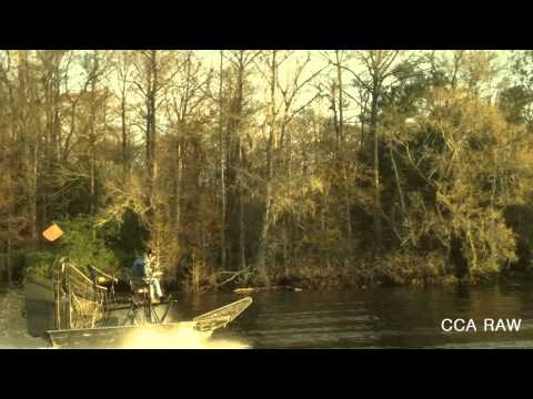 ☠ Airboat CCA - I Did That On Porpoise