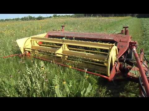 cutting prairie hay with a ford tractor and new holland haybine