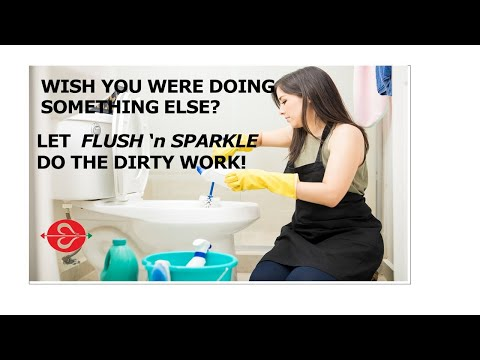 Toilet Bowl Cleaner: Use Fluidmaster's Flush 'n Sparkle Automatic Toilet Bowl Cleaner