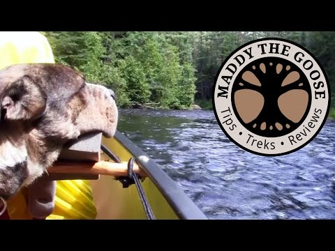 Rock Dodging (with a few thumps) - (8 of 10) 5 Day Solo Canoe Trip with my Dog