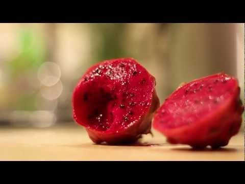 Growing Dragon Fruit From Seed | Ep. 8