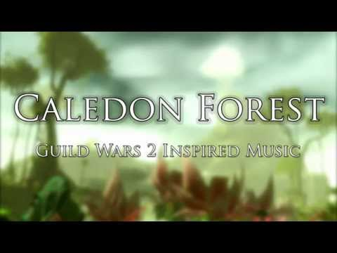 Caledon Forest | Guild Wars 2 Inspired Music