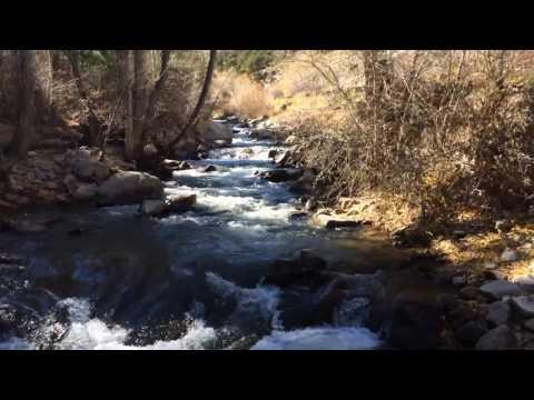 Cottonwood Creek | Buena Vista, CO