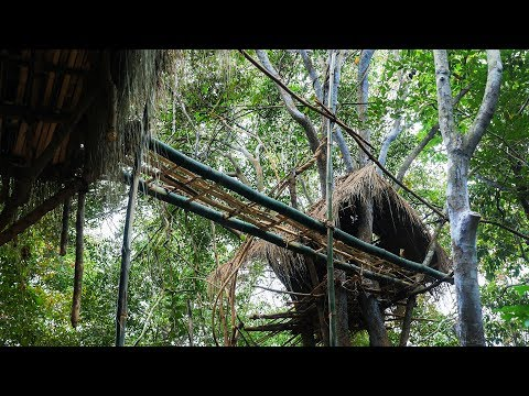 Primitive Technology, Make bridge between two tree house in the forest