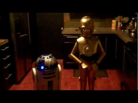 Best C3PO and R2D2 homemade costumes