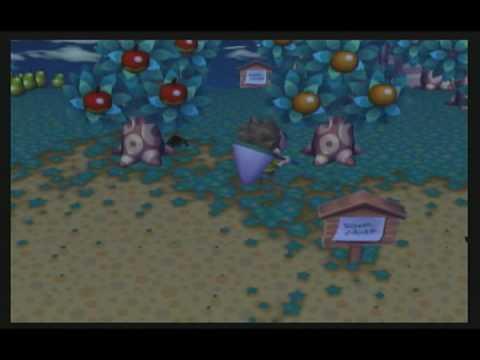 Animal Crossing City Folk - How To Catch Tarantulas & Scorpions