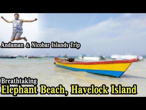 Elephant Beach Havelock Andaman | How is Elephant Beach Andaman | Tourist Places in Havelock Island