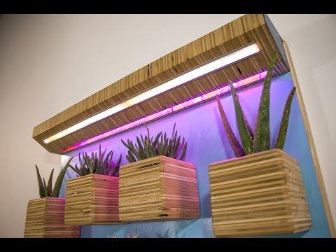 DIY Wall Garden | Plywood Planters & LED Grow Lights