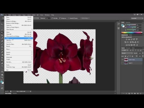how to remove image background in photoshop cs6 very fast and very easy and save as png jpg etc