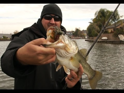 Winter Bass Fishing Lures & Tips!
