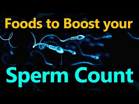 Foods to Boost your Sperm Count - Food to Increase Your Sperm Count And Fertility