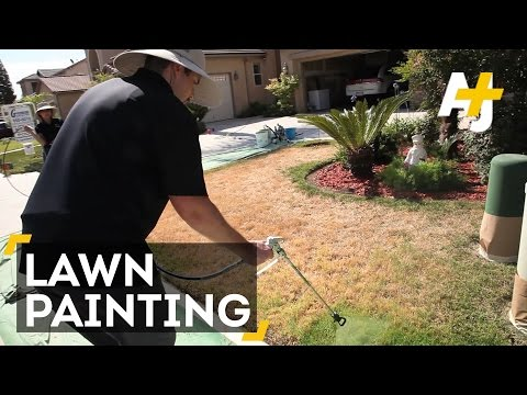 Drought Hack: Paint Your Lawn Green...