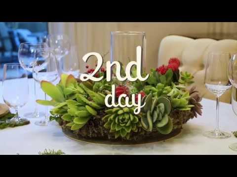 Christmas Decorating Ideas |  Succulent Wreath | DIY Christmas Decorations | 2