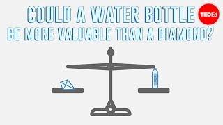 The paradox of value - Akshita Agarwal