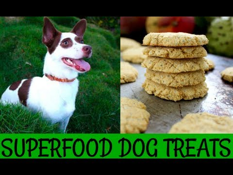 Healthy Homemade Dog Treats - Superfood Cookies