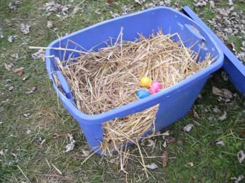 DIY Plastic Tote Chicken Nest Box