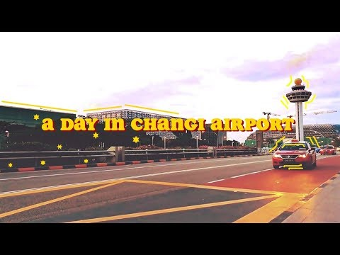 🌴🇸🇬 a day in the airport [CHANGI SINGAPORE] ⚫TheWickermoss