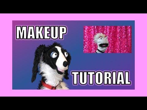 I Tried Following a Makeup Tutorial:  Sullivan Spaniel