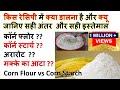 बहुत पूछ चुके सबसे जानिए सही अंतर Diffrence between Corn Flour and Corn Starch Arrowroot Maize Flour
