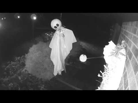 Caught on Arlo: Spooky Halloween Decorations