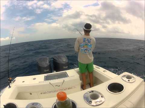 Tailing Sailfish in Marathon