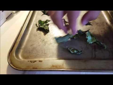How To Make Basil Seasoning