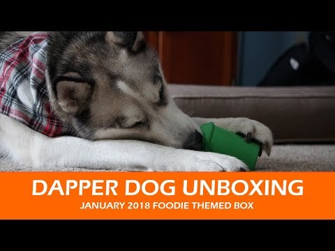 Dapper Dog Unboxing  |  January 2018 Foodie Themed
