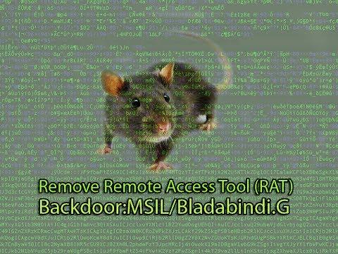 Remove Remote Access Tool (RAT)