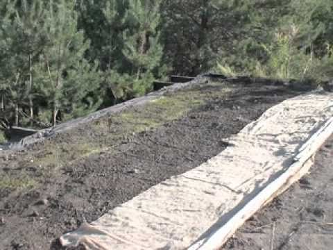 Greenroof 101, Home Made Green Roof