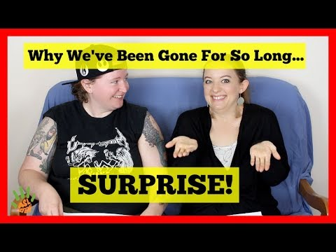 Surprise... Why We've Been Gone For So Long!  (We're PREGNANT!) ⎮ ASL Stew