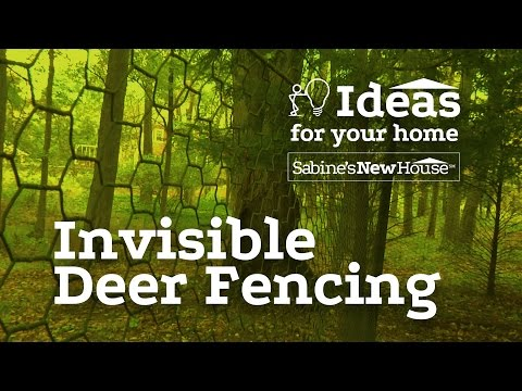 Invisible Deer Fencing | Sabine's New House