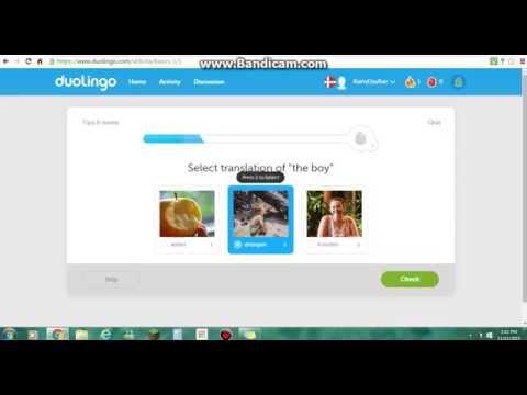 Duolingo: Learning Danish #1