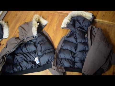 Fake or Real Canada Goose: 5 Easy ways to tell (Long Version)