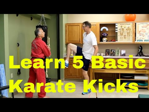 How to Perform 5 Basic Karate Kicks (Increase Strength, Balance & Mobility).