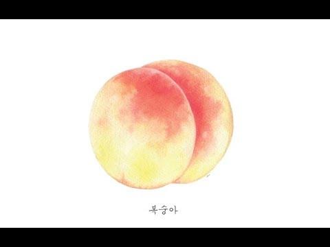 복숭아 그리기 _ Watercolor painting illustration _ Peach Fruits