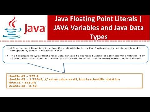 Java Tutorial : Java Floating Point Literals