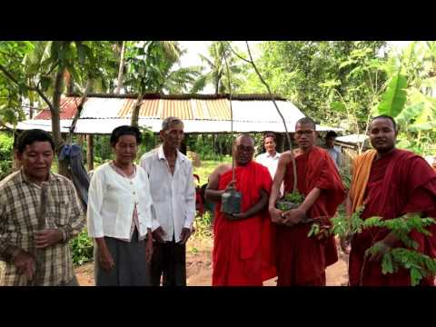 Solidarity Wells for social well-bing and planting trees for environmental protection