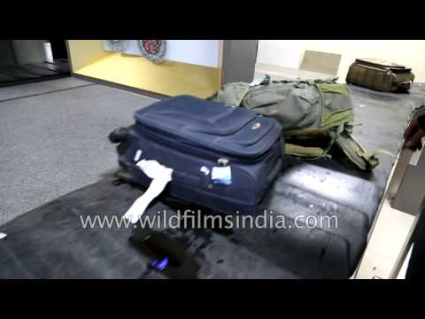 Baggage claim at IGI Airport T3, New Delhi