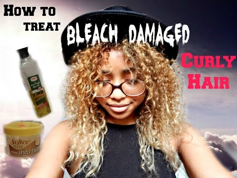 How to Treat Bleach-Damaged Curly Hair [My First Video]