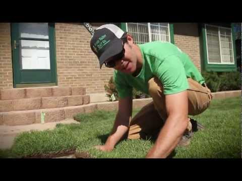 How To Install Sod, Small Front Yard - Green Valley Turf Co