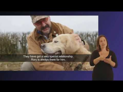 About Hearing Dogs for Deaf People