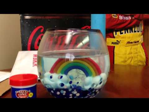 How To Feed Your Betta Fish