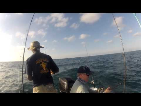 Fighting a goliath grouper