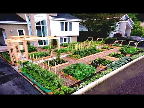 Small Terraced Front Garden Designs
