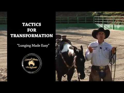 Lunging Made Easy by Richard Winters & Weaver Leather