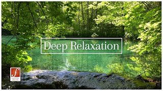 Deep Relaxation | 2 hours of Classical Music | Relax with Nature & Music