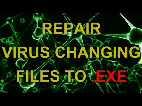 REPAIR - VIRUS changing files and folders to .EXE extension