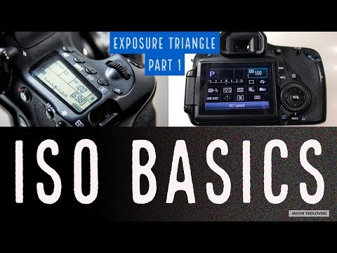 Photography for Beginners:  ISO Basics