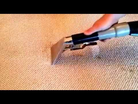 Rainbow AV LTD - how to clean dog poop out of the carpet, emergency cleaning